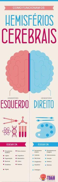 TDAH Cerebro Direito e os Hemisférios Cerebrais Sou total Direito! Coaching, Study Notes, Student Life, Neuroscience, Study Tips, Geronimo, Medicine, Knowledge, Mindfulness
