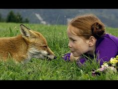 (The Fox And The Child) 2007 DVD Full Movie Family Movie Animal Movie