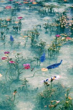 """Aquarius: """"Keep your heart open to dreams. For as long as there's a dream, there is hope, and as long as there is hope, there is joy in living. Gifu, Monet, Terre Nature, Landscape Photography, Nature Photography, Art Et Nature, Art Chinois, Nature Aesthetic, Aesthetic Pictures"""