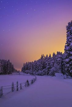 Amazing Dreams, Pretty Things & Everything in Between – Winterbilder Winter Szenen, Winter Sunset, Winter Magic, Winter Pictures, Nature Pictures, Cool Pictures, Winter Photography, Landscape Photography, Nature Photography