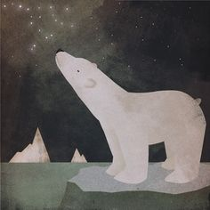 polar bear, on site a book