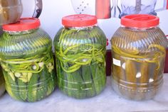 salatalık turşusu yapımı Appetizer Salads, Beverages, Drinks, Turkish Recipes, Winter Food, Drink Bottles, Pickles, Yogurt, Water Bottle