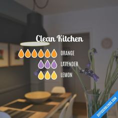 Blend Recipe: 6 drops Orange, 3 drops Lavender, 3 drops Lemon