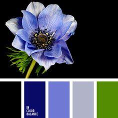 azul neón, azul oscuro y celeste, azul oscuro y negro, azul ultramar, celeste y azul oscuro, colores de la anemona, colores neón, negro y verde, verde fuerte, verde lechuga neón, verde vivo, verde y negro.