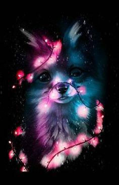 Cute Animal Drawings Kawaii, Cute Cartoon Animals, Cute Animals, Baby Animals Super Cute, Cute Baby Dogs, Cute Galaxy Wallpaper, Wallpaper Iphone Cute, Baby Wallpaper, Iphone Wallpapers