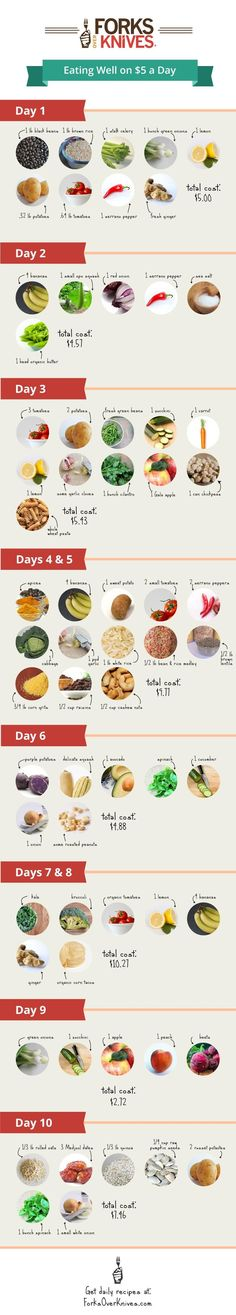 Eating Well on $5 a Day guide. Definitely a guide, not sure where the store that sells all of these things for these prices is. Pretty sure I would have to spend more than $50 to buy this ten day plan.
