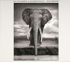 """ELIZABETH AVEDON: NICK BRANDT: """"On This Earth - A Shadow Falls"""" Published by Big Life Editions"""