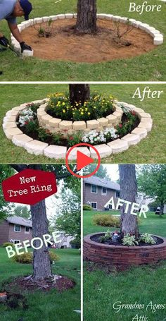 19 Cool Ideas to Create a Round Garden Bed with Recycled Things Create a landscape accent around your garden tree trunks with stacked stones.Create a landscape accent around your garden tree trunks with stacked stones. Garden Yard Ideas, Diy Garden, Garden Trees, Lawn And Garden, Garden Projects, Garden Bed, Tiny Garden Ideas, Recycled Garden, Garden Planters