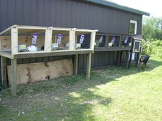 breeding rabbit grow out cages | Two 8 foot banks and one small isolation hutch on far end. Newest ...
