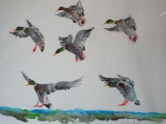Six Mallards Landing