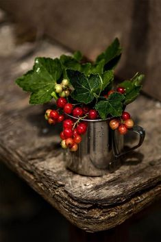 Red currant by Oksanka Sybydlo All Things Christmas, Christmas Time, Think Food, Deco Floral, Fruit Art, Fruits And Vegetables, Yule, Tis The Season, Food Art