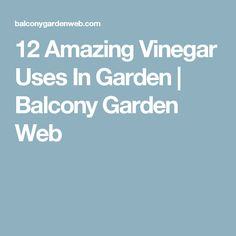 12 Amazing Vinegar Uses In Garden | Balcony Garden Web