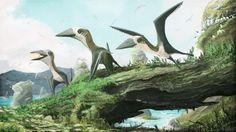 Newsela | Look! Up in the sky! A 77 million-year-old flying reptile!