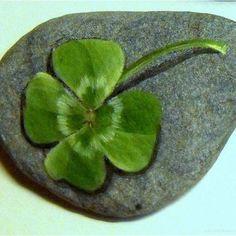 100 Inspirational DIY Of Painted Rocks Ideas 84