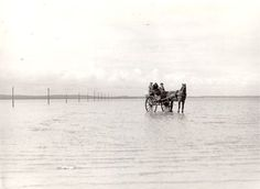 Known to the locals as noddies, these horse drawn traps carried mail across the water from the mainland of Beal to Holy Island, Northumberland. Best Christmas Lights, Best Christmas Markets, London Christmas, General Post Office, Holiday Money, Restaurant Deals, Bonfire Night, Horse Drawn, Festival Lights