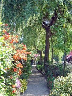Giverney - Monet's Gardens *** photo by Robert Bovington *** blog http://bovingtonbitsandblogs.blogspot.com.es