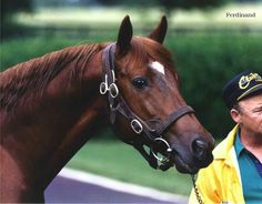 Kentucky Derby Winner Ferdinand. Because of him there is now many retirement facilities and a 'buy back' clause- RIPeace