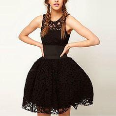 Women's Lace Sleeveless Skater Dress - USD $ 24.99