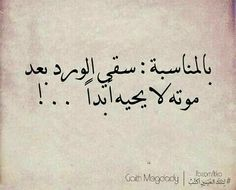 للتذكير Talking Quotes, Mood Quotes, Positive Quotes, Life Quotes, Poetry Quotes, Arabic Tattoo Quotes, Funny Arabic Quotes, Sweet Words, Love Words