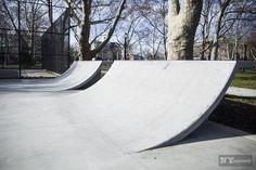 Cooper Skate Park - Tree design