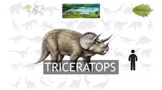 Dinosaurios para niños - Rugidos, Nombres y más!