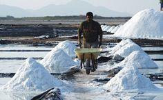 Honduras: Anuncian inversiones para aumentar calidad de la sal Los productores de sal del país anunciaron nuevas inversiones con el objetivo de aumentar la calidad del producto con la asistencia técnica del Programa Nacional de Desarrollo Agroalimentario (Pronagro). http://www.latribuna.hn/2016/10/18/anuncian-inversiones-aumentar-calidad-la-sal/