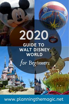 2020 Guide to Walt Disney World for Beginners