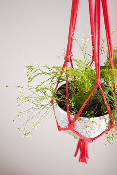 Tutoriel Do It Yourself vous expliquant comment réaliser soi-même une suspension pour plantes vertes en trapilho (fil de jersey) à l'aide de simples noeuds.