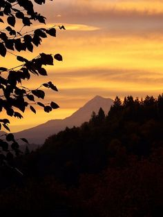 Mt. Hood at Sunrise from Bluff Rd. in Sandy Oregon