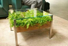 Fill Your Home With Greenery With The Living Table - Design Milk Terrarium Table, Planter Table, Planters, Patio Table, Diy Patio, Wood Table, Dining Table, Green Coffee Tables, Glass Top Coffee Table