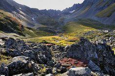 Alaskan Summer - the Bowl on Mt. Marathon