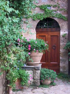 arched door and potted plants