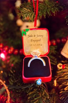 Marriage Proposal Ideas from HowHeAsked Jenny and Jake's Christmas Lights Proposal
