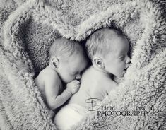 Newborn twin boys photography Www.facebook.co.uk/DonnaHockingPhotography