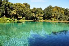 There's No Better Place To Be Than These 12 Natural Springs In Florida