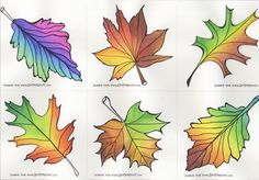 Coloring Brush Pen, Coloring Tips, Leaf Coloring, Colouring Pages, Adult Coloring, Coloring Books, Colored Pencil Tutorial, Colored Pencil Techniques, Garden Drawing