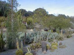desert gardens balboa park, san diego, ca