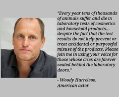 I'm posting this here b/c many animal lovers have no idea on how many dogs, cats, rabbits, pigs and primates are suffering in labs solely for cosmetic tests. Those intelligent animals are tortured several times during the course of their miserable lives so we can have a new shampoo or a lipstick. Please, say no to such cruelty. Be the voice for those who have no voice.