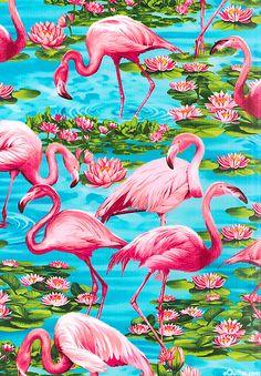 pretty flamingo fabric or print on wall - framed