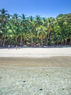 Isla Bolanos Chiriqui, Panama