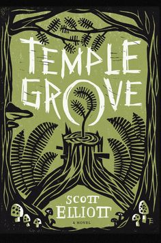 Temple Grove by Scott Elliott book coverBy Thomas Eykemans