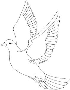 Free Dove Coloring Page