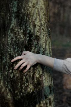 Find images and videos about game of thrones and bran stark on We Heart It - the app to get lost in what you love. Narnia, Outlander, Twilight, Adam Parrish, Maggie Stiefvater, Stranger Things Aesthetic, Over The Garden Wall, Carlisle, The Last Airbender