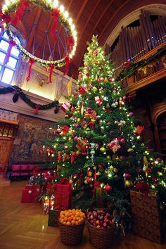 Extreme Christmas Tree at the Biltmore House - 40-foot fraser fir. Tallest Indoor Christmas tree.