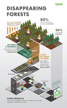 Negative effects of deforestation on forests.
