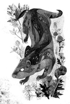 Kirri: illustration by Prabha Mallya for Nilanjana Roy's The Wildings. Via Nilanjana Roy