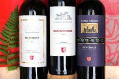 Wine and Food Pairing - Wines of Castello di Magione, Umbria Wine Tasting