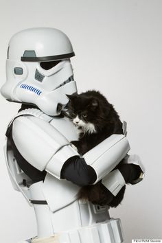 Vilões de Star Wars mostram poder da Força em campanha de adoção de animais - LOL - Link - Estadao.com.br
