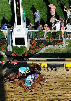 May 2011: Preakness Stakes - Pimlico Race Track, Baltimore MD
