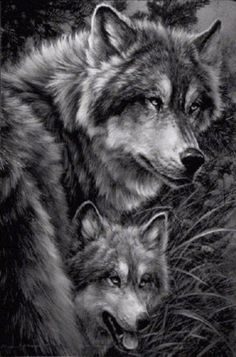 wolf and pup Save the wolves 💕💕 Wolf Spirit, Spirit Animal, Beautiful Creatures, Animals Beautiful, Baby Wolves, Red Wolves, Wolves Art, Fantasy, Photo Animaliere